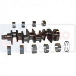 Arbore Motor  6005000672, 6005005039,